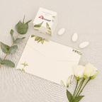 Partecipazione e bomboniera Botanica Bianca