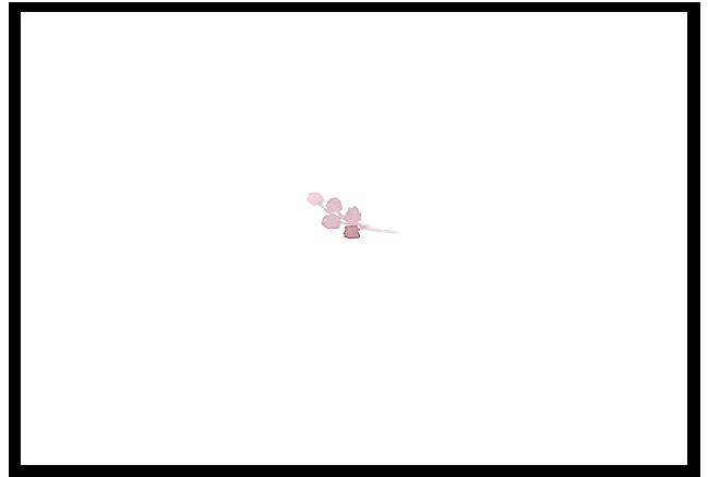 Partecipazione con invito e lista nozze floreale rosa