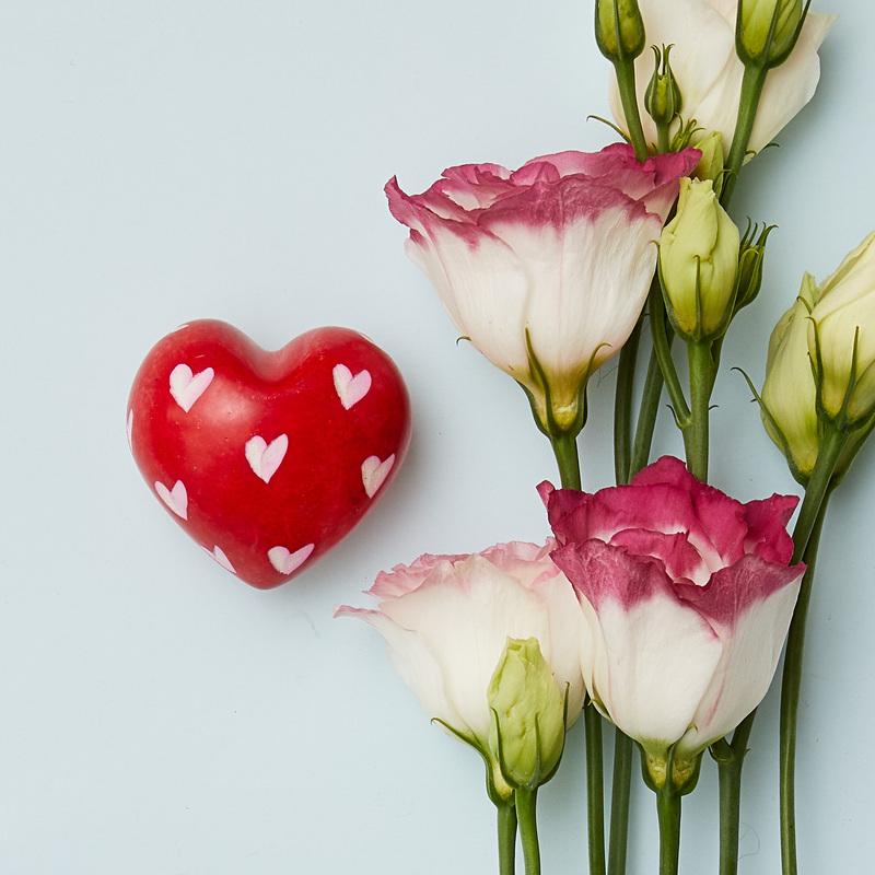 Pietra saponaria a forma di cuore rosso con cuoricini